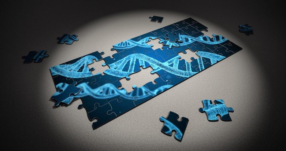 Gentechnik verändert DNA