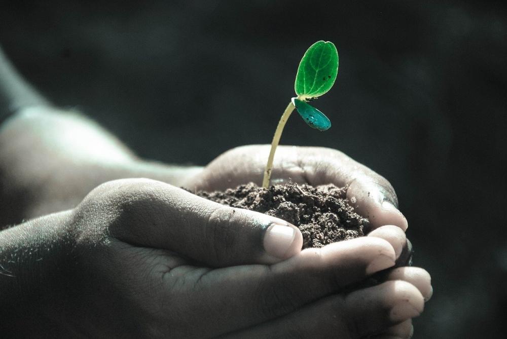Die Erde ist unsere Lebensgrundlage
